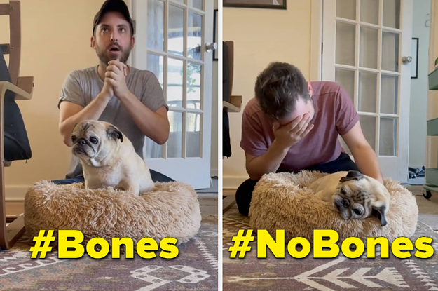 """Here's A """"Bones Day"""" Explainer In Case You Have No Idea Why People Keep Talking About """"Bones"""" And """"No Bones"""""""