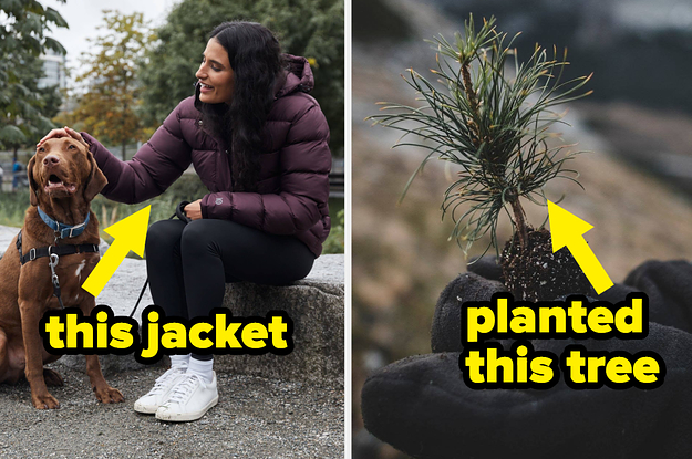 This Canadian Clothing Company Will Plant Real-Life, Actual Trees Every Time You Place An Order