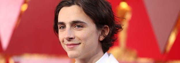 Timothee Chalamet attends the 90th Annual Academy Awards