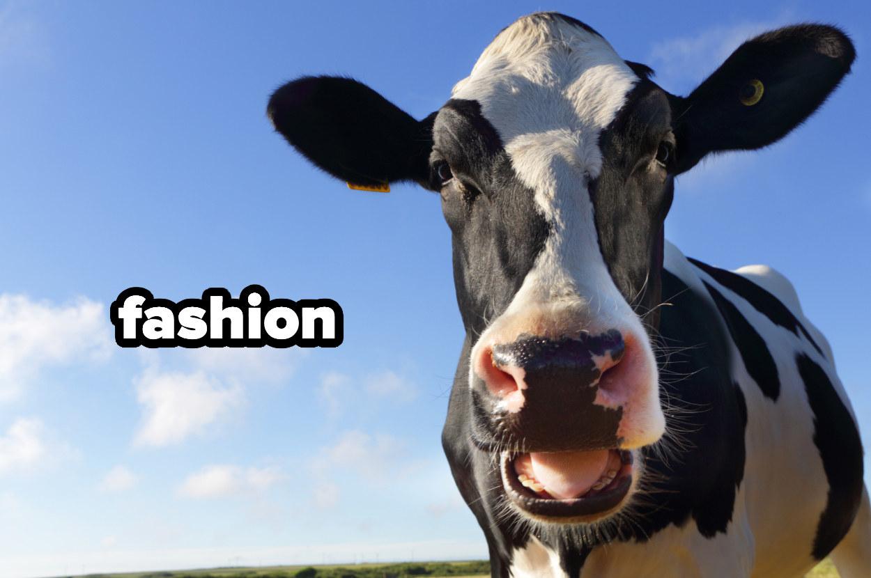 """fashion"" written by a cow"