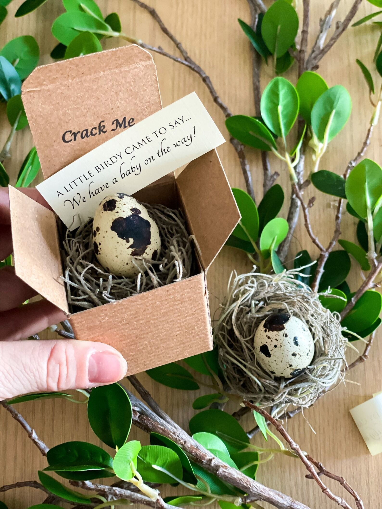 palm-sized box with a mini speckled egg and nest inside. it has a note that says a little birdy came to say we have a baby on the way.