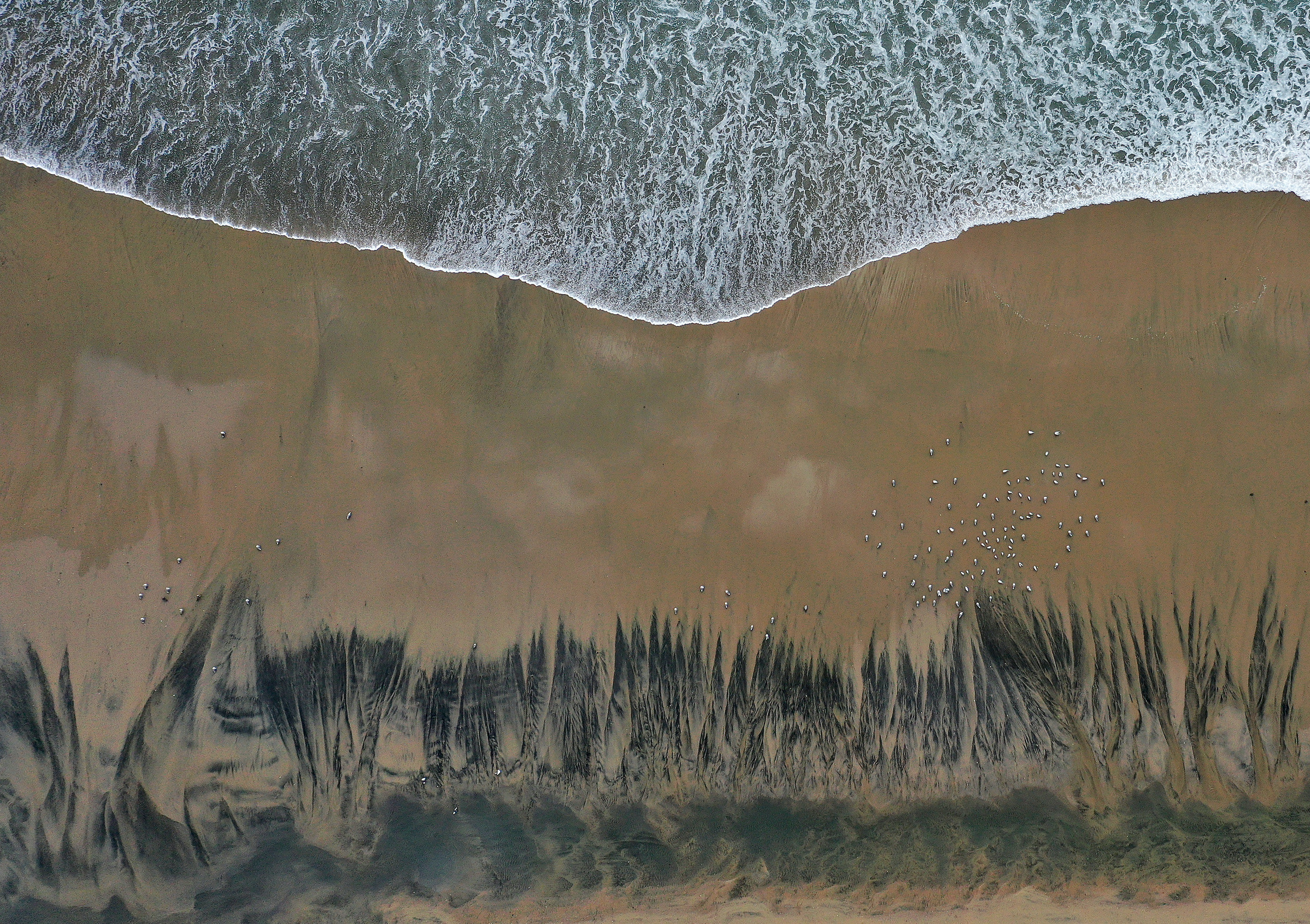 A wave approaches the blackened beach in California as oil drifts in from the spill