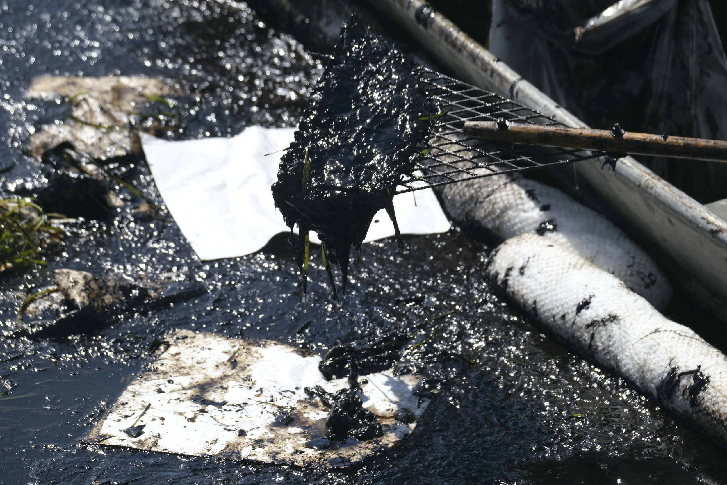 A tool for cleanup is covered in gooey remnants from the oil spill
