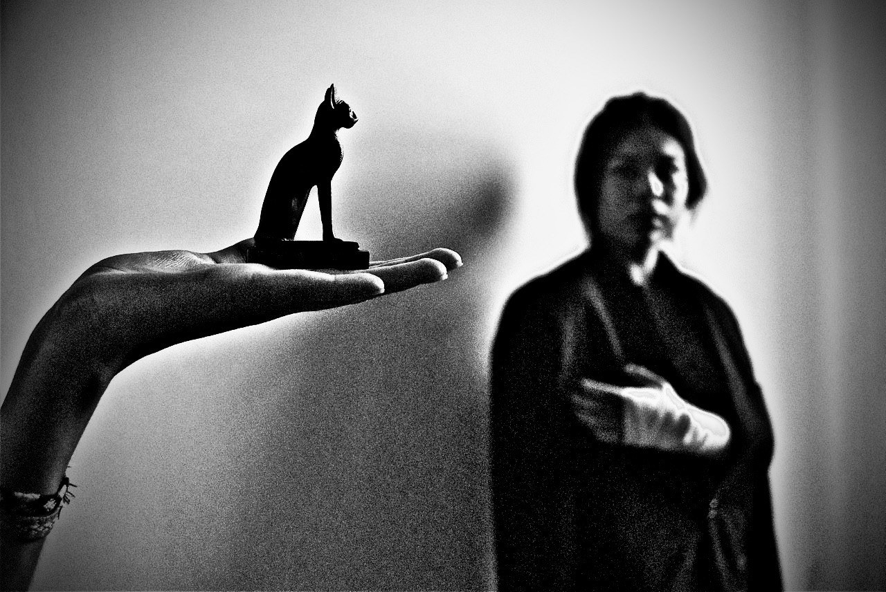A man holds a cat figurine, a man with a bandaged hand is in the distance