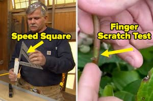 Tom Silva holding a speed square and a finger scratch test seeing if plant is still alive
