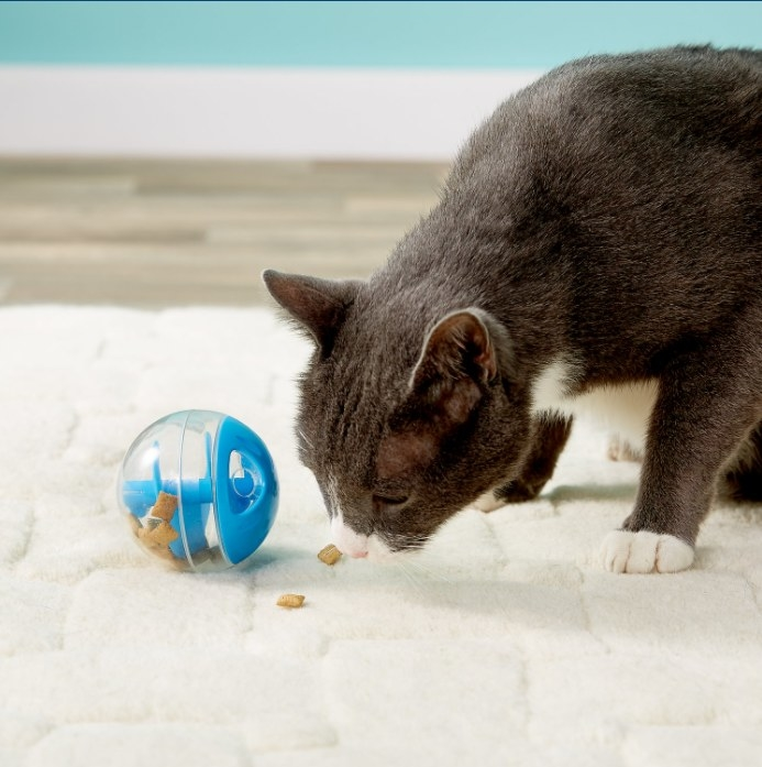 An image of a cat treat ball toy