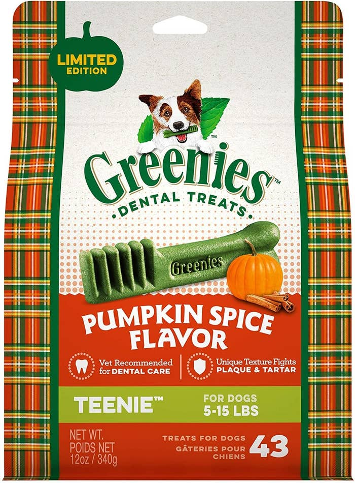 Pumpkin spice greenies dental treats for dogs