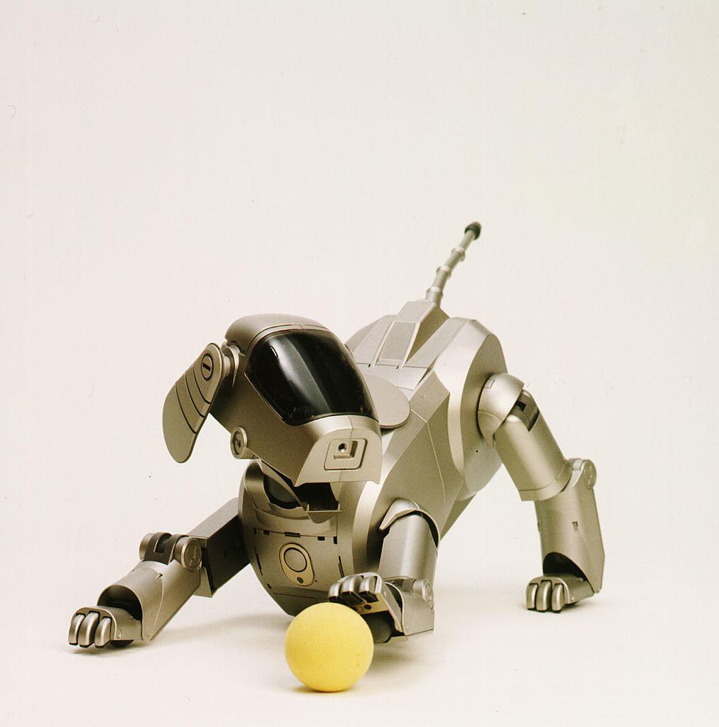 a silver robot dog