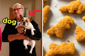 On the left, Jay from Modern Family holding his French bulldog Stella with an arrow pointing to her and dog typed next to her face, and on the right, some dino chicken nuggets
