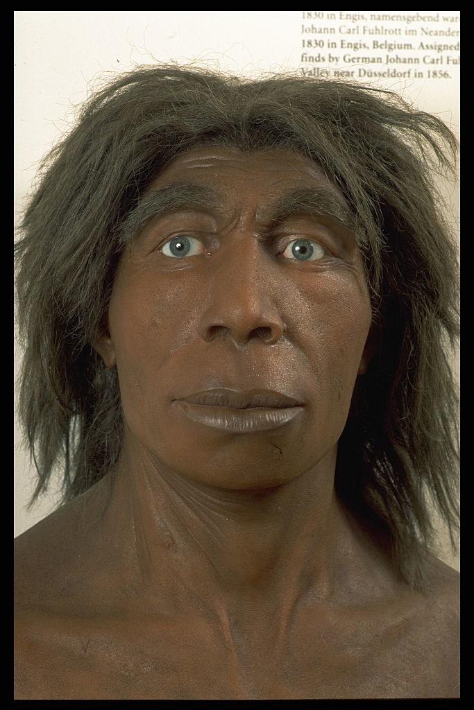a neanderthal recreation