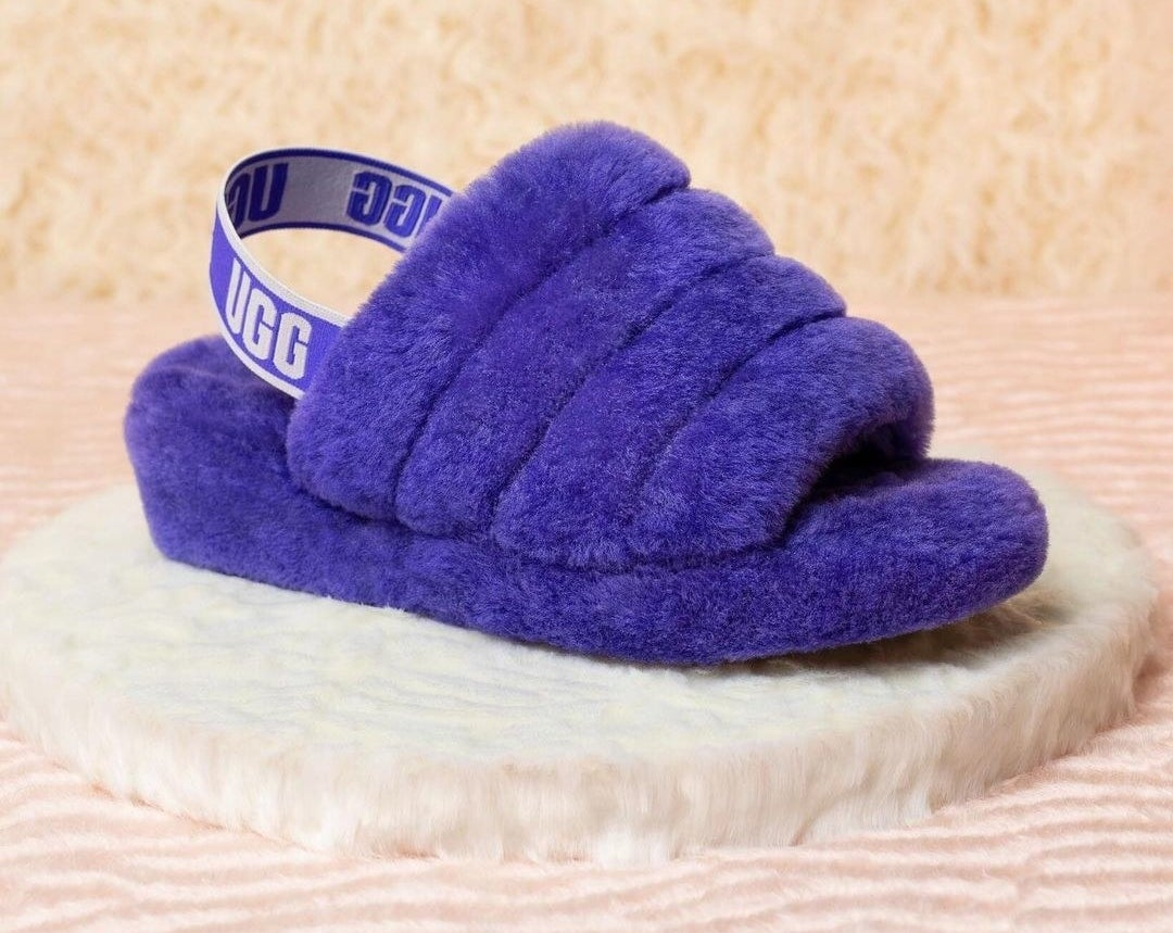 the slippers in blue