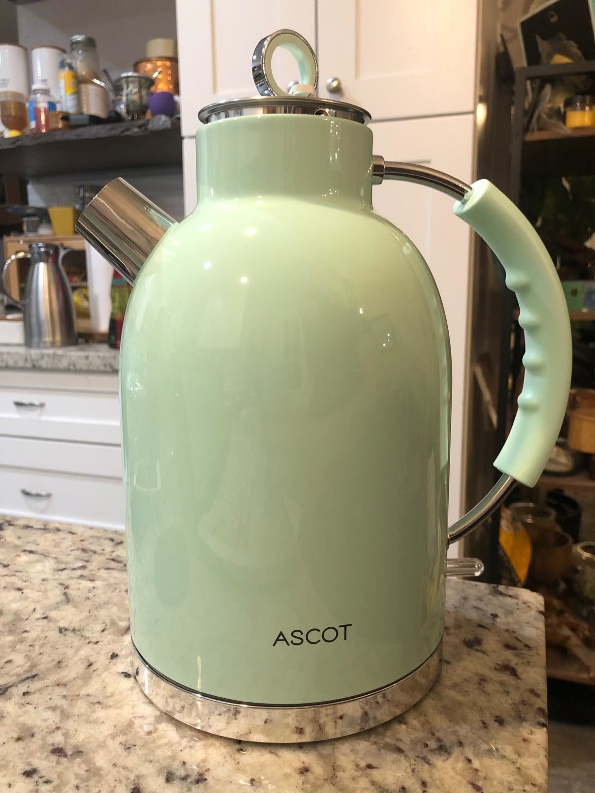 reviewer image of the mint kettle on a countertop