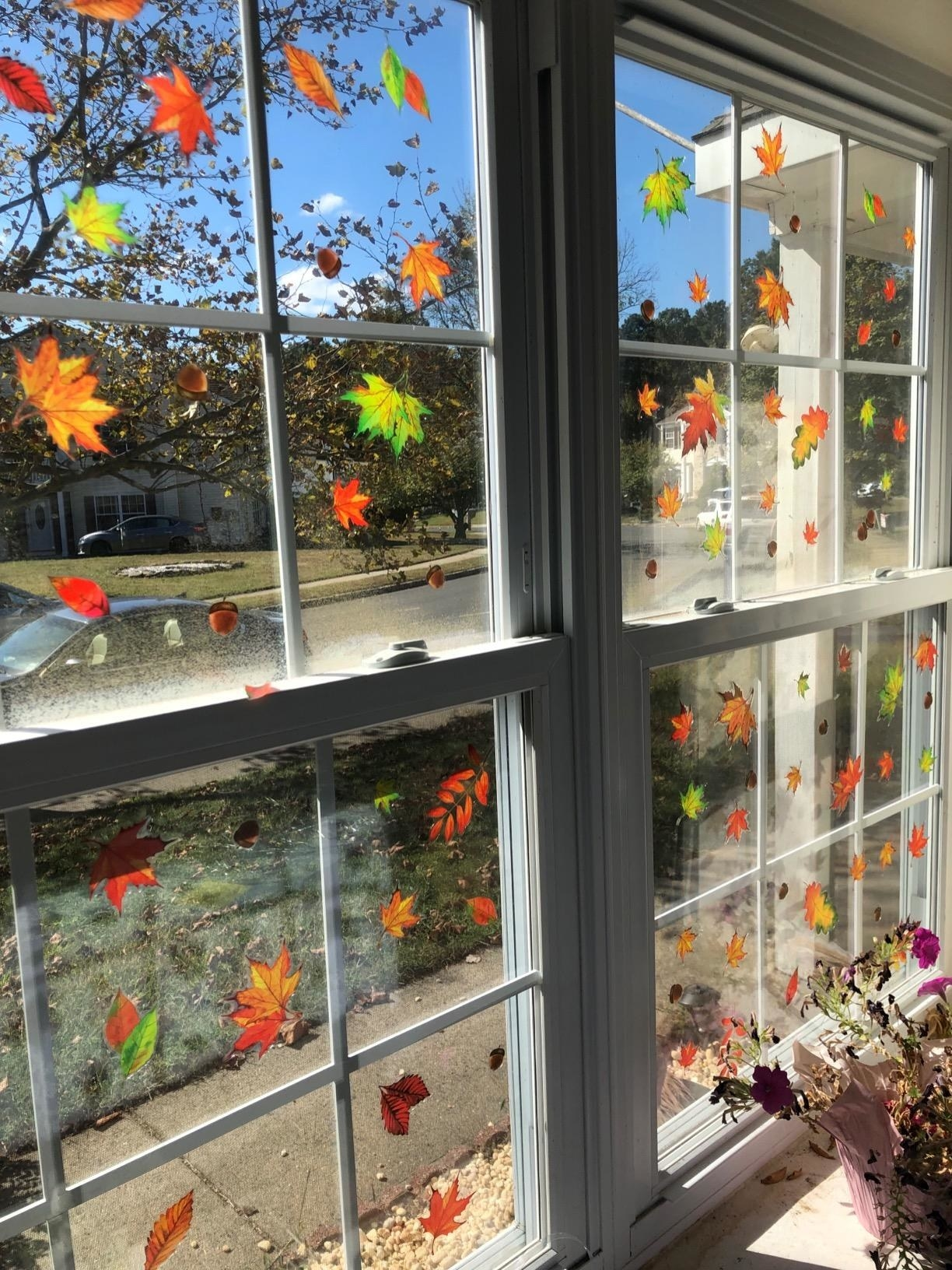 Red, orange, and green stick-on leaves applied to a clear window overlooking a street
