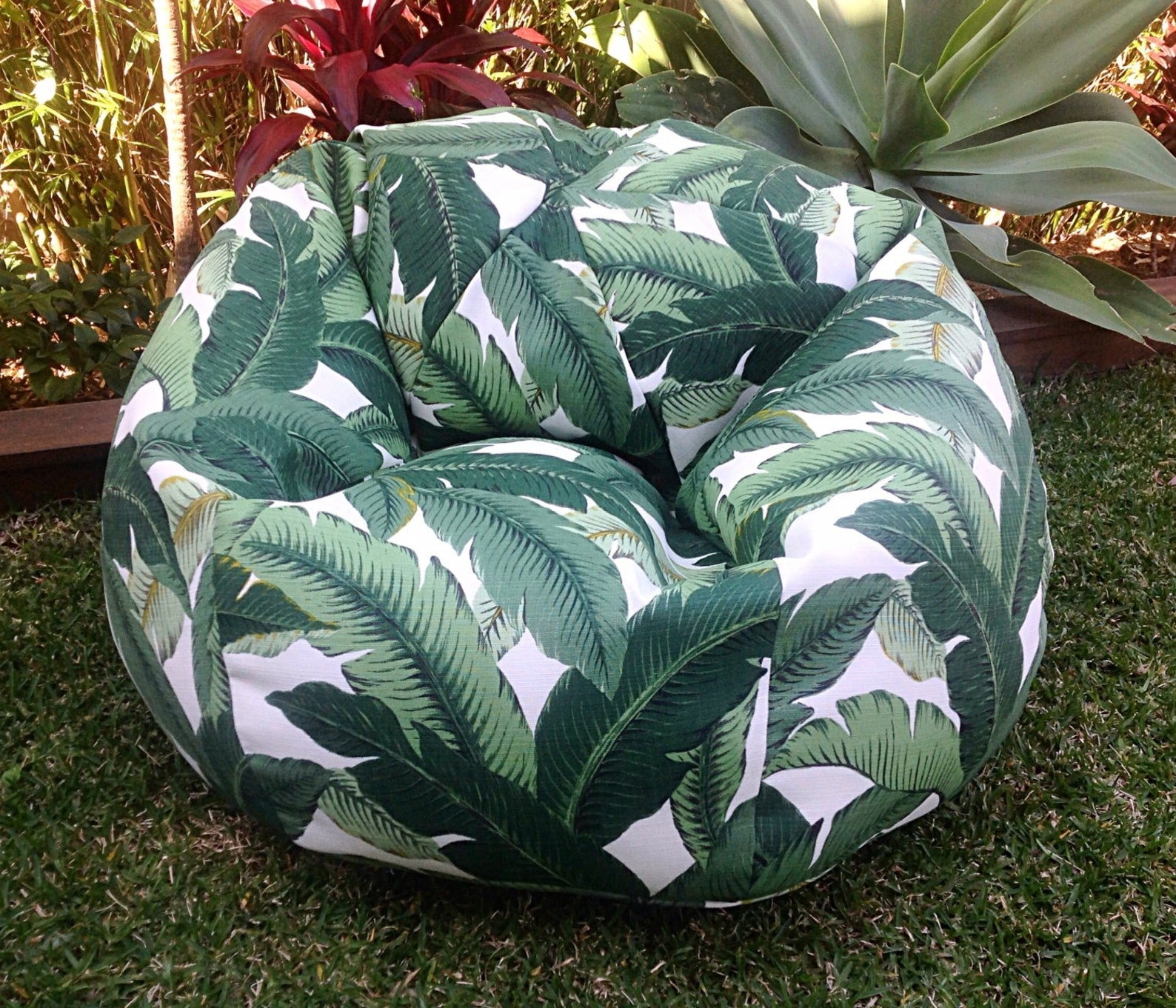 The green palm tree cover