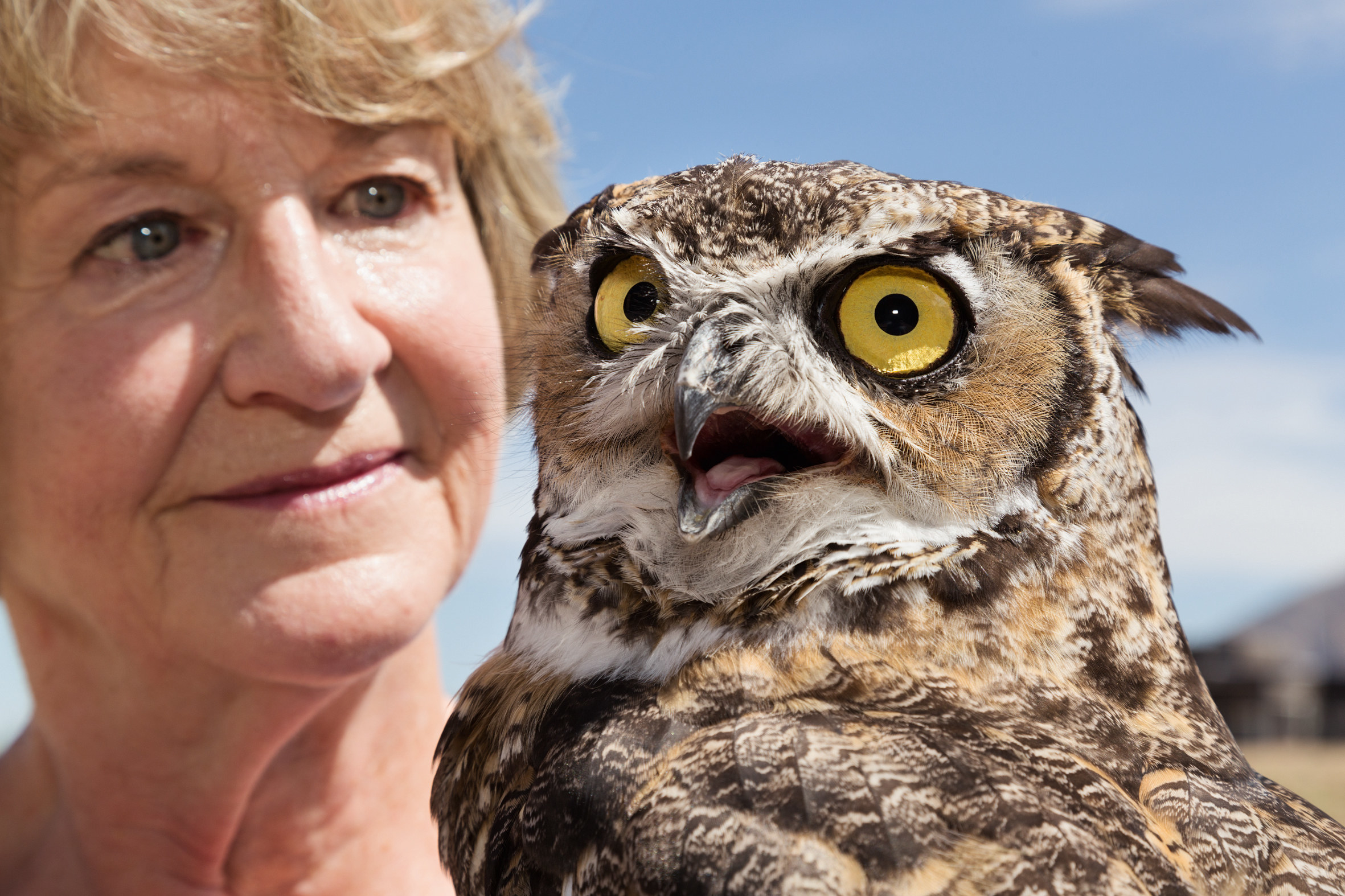 a close-up of a woman and an owl