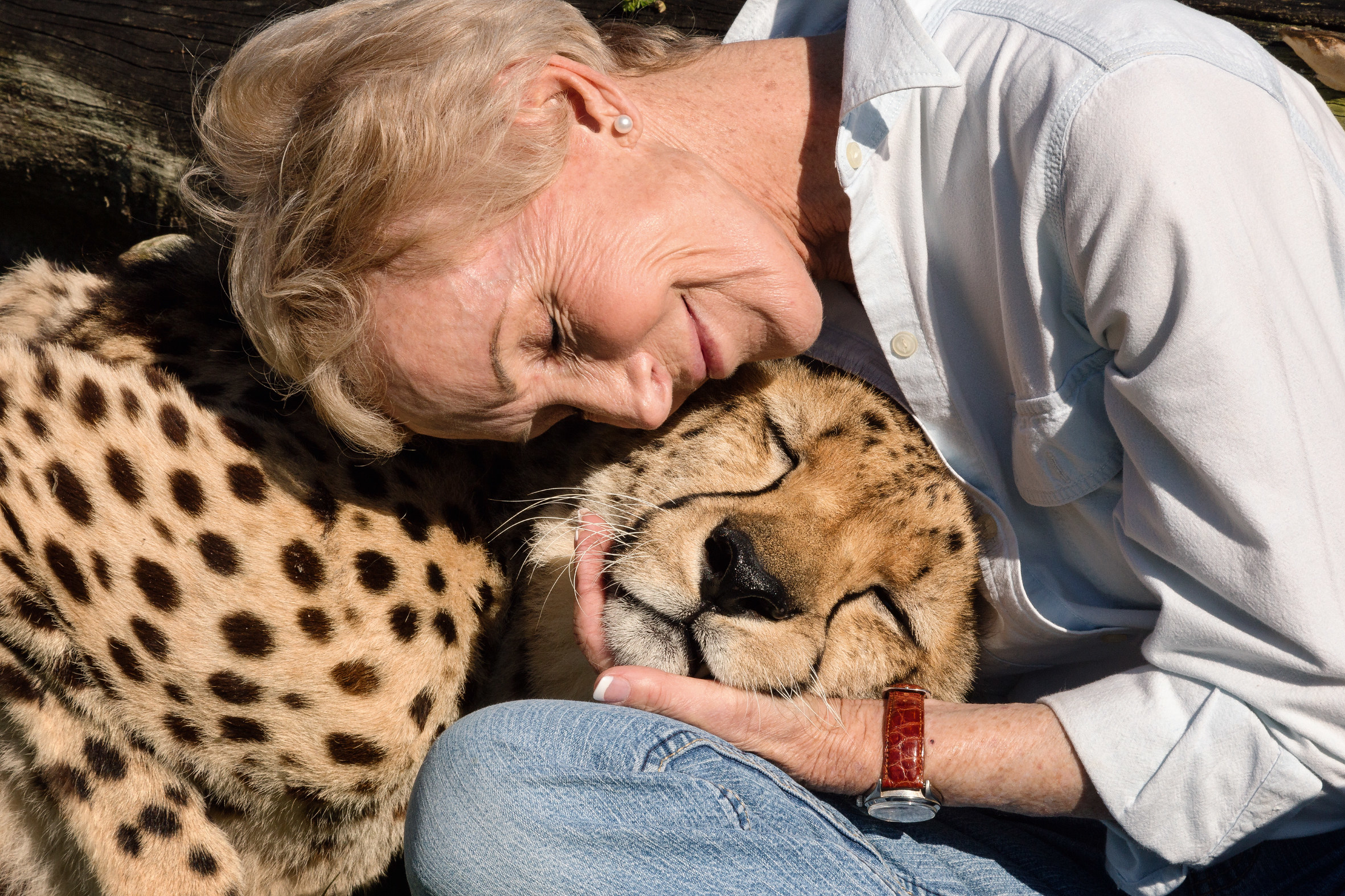 A woman rests her head on a cheetah's head