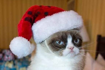 12-days-of-grumpy-cat-christmas-1-12960-