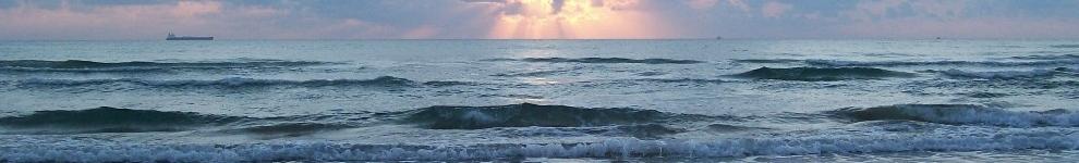 coastalgal