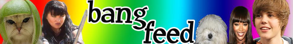 BangFeed