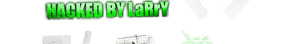 larry bibcek