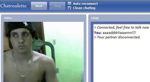 Gay bear chat roulette