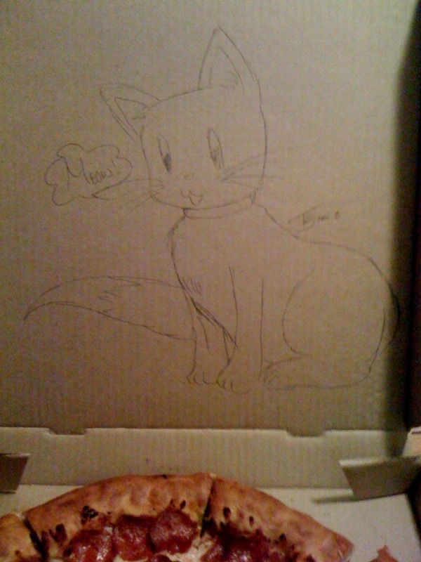 """Draw A Cat On The Box"" (The Good Version)"