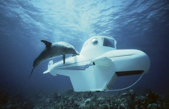 Oceanographer - Marine Biology