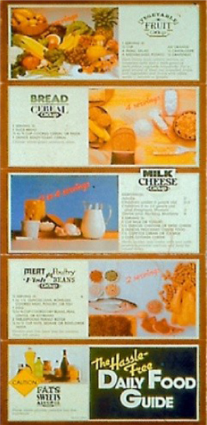 Short history of the usda food graphics the food wheel replaced the daily food guide in 1984 showcasing the food groups that would later be encompassed in the food pyramid forumfinder Choice Image