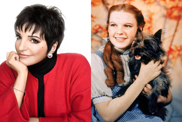 Liza Minnelli / Judy Garland