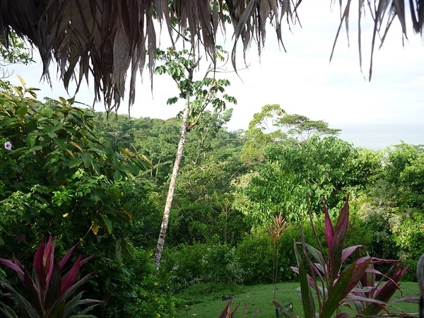 The Organization for Tropical Studies (OTS) in Costa Rica