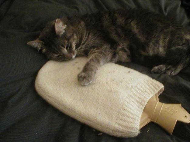 Hot water bottle cozy: