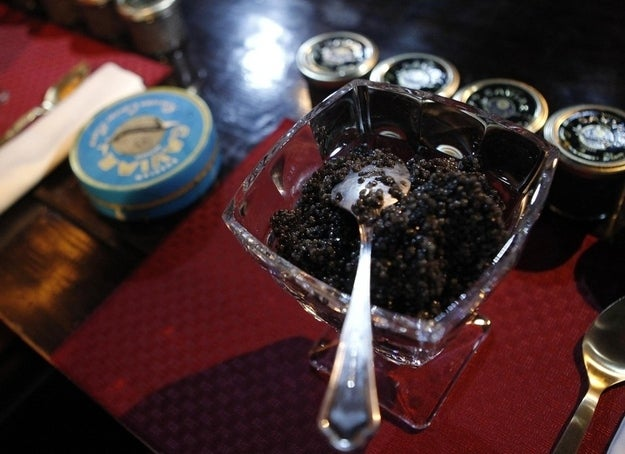 A cup with caviar is prepared for a competition which requires contestants to consume 500 grams of caviar in the fastest speed in Moscow, April 20, 2012. Alexander Valov, 49, won the contest.