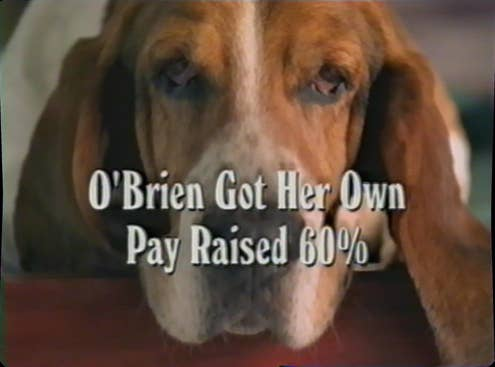 Duncan, the Basset Hound from Romney's 2002 ad.