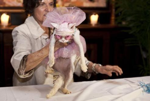 The Styling Granny Ballerina