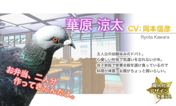 pigeon dating site Hatoful boyfriend is set in an alternate version of earth in which sapient birds have seemingly taken the place of humans in society for reasons that are hinted at, but not fully explained in the dating simulation portion of the game.