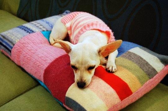 Pet bed: