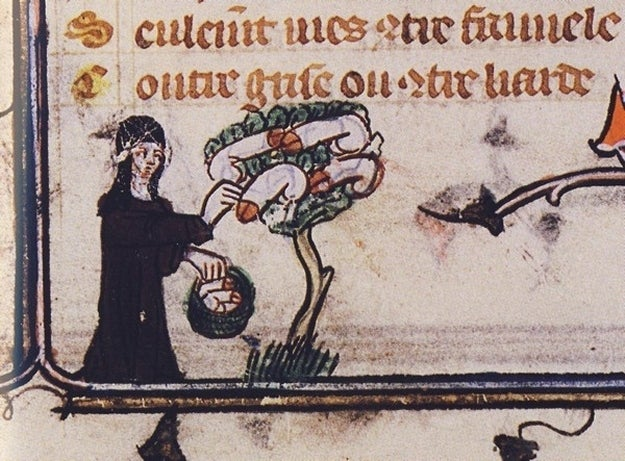 From a 14th century copy of Romance of the Rose.