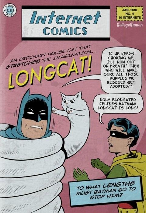 Longcat vs. Batman by Unknown