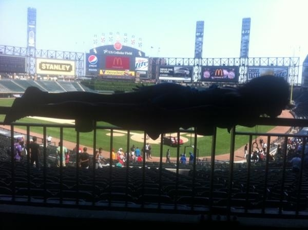 US Cellular - White Sox