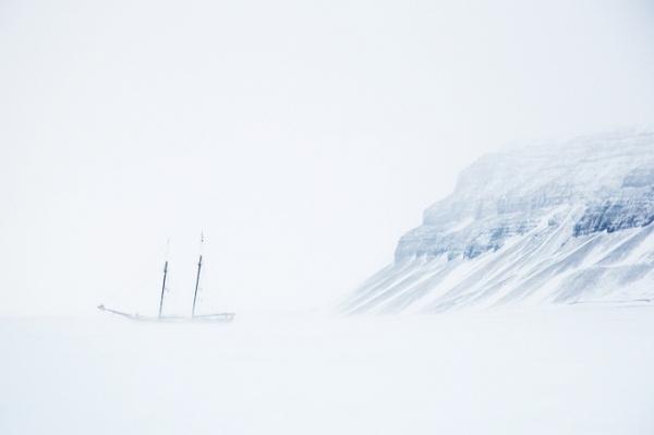 """""""Noorderlicht, Spitsbergen, Norway"""" Philip Harvey"""