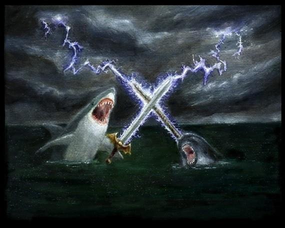 Shark v. Narwhal