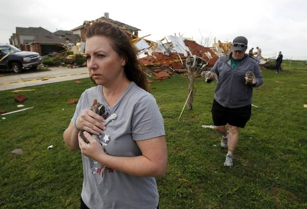 Brandy Beasley (L) and Bobbie Deen (R) carry kittens rescued from a home demolished by the tornado during the cleanup effort in Forney, Texas April 4, 2012. Thousands of residents were without power and hundreds of flights canceled on Wednesday as authorities surveyed the damage a day after up to a dozen tornadoes struck the densely populated Dallas-Fort Worth area of Texas.