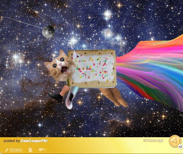 IRL Nyan by DaleCooperFBI