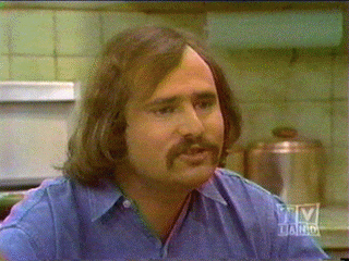 """Michael """"Meathead"""" Stivic - All In The Family"""
