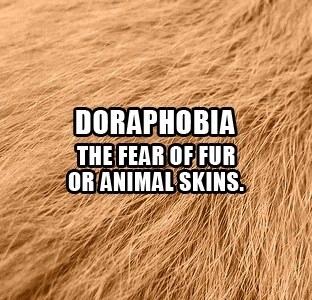 #8. Doraphobia