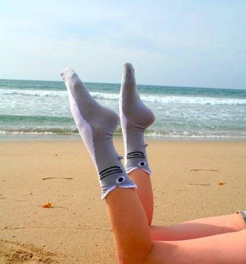 Shark Socks Will Eat Your Fee!