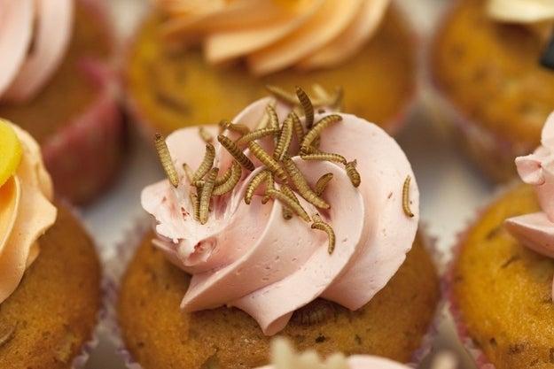 A mealworm cupcake.