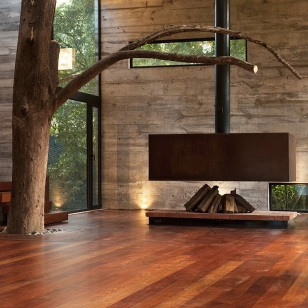Bringing the outdoors in, literally.