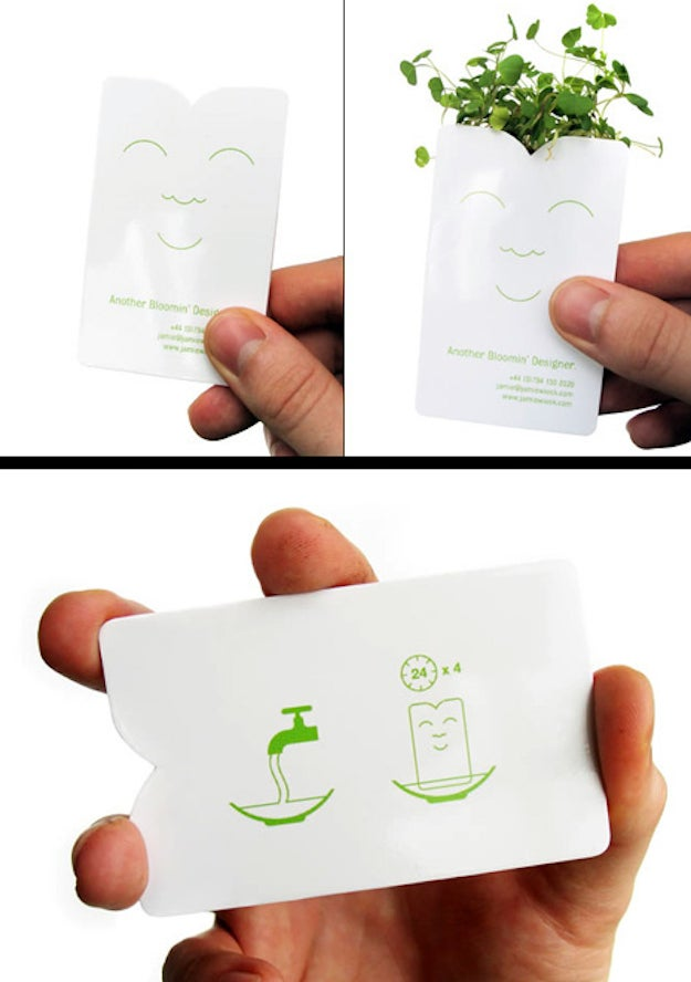 """This card by """"Another Bloomin' Designer"""" Jamie Wieck sprouts a mini plant after four days of soaking."""
