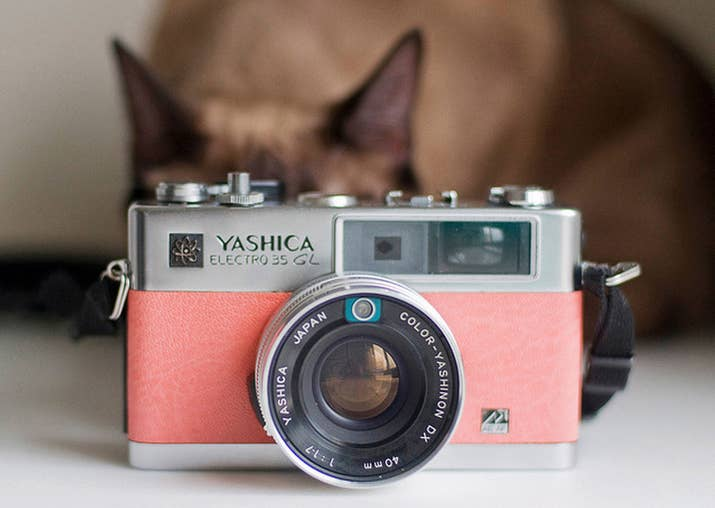 Don't need another blender? Would you rather have a vintage camera or an